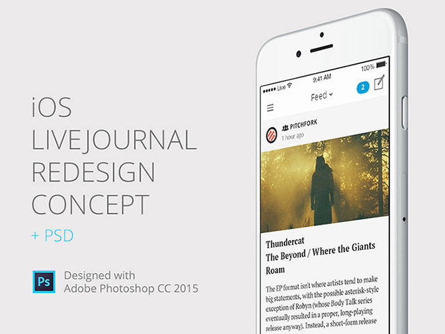 http://cdn.freebiesbug.com/wp-content/uploads/2015/08/iOS-Livejournal-Redesign.jpg