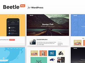 Build Your Portfolio and Web Resume with Beetle Pro