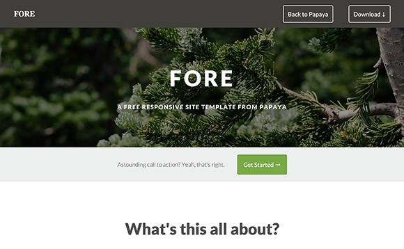 Fore - HTML website template