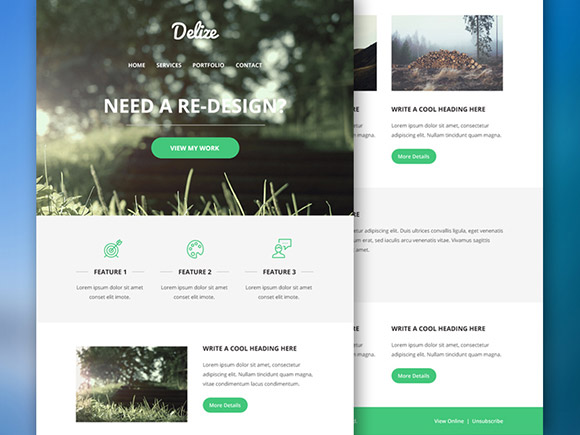 Delize Email Psd Template Freebiesbug