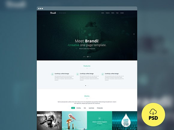 Brandi - Multipurpose PSD template