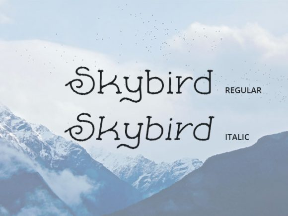 Skybird Rough: A crazy free font